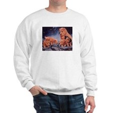 Norfolk Terriers Sweatshirt