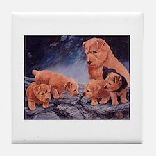 Norfolk Terriers Tile Coaster