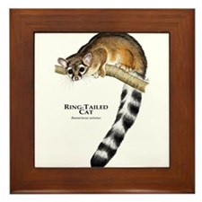 Ring-Tailed Cat Framed Tile