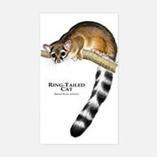 Ring-Tailed Cat Rectangle Decal