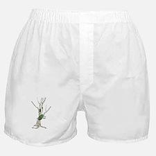 SupremaTree Boxer Shorts