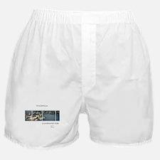 Stockholm souvenirs Boxer Shorts