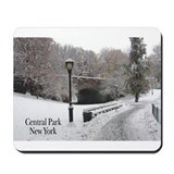 Central park new york Classic Mousepad