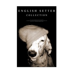 English Setter Collection Poster Print