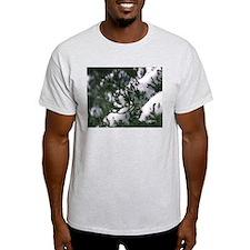 Snowy Evergreen T-Shirt