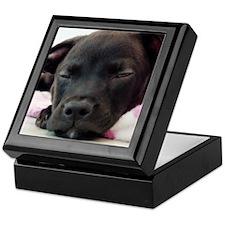 Sleeping Puppy Keepsake Box
