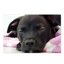 Sleeping Puppy Postcards (Package of 8)