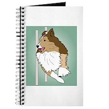 Agility Sheltie Journal