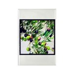 Wine Country Ripe California Olives Magnets - 10 -