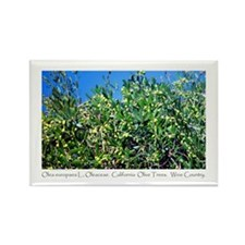 Wine Country Botanical Gifts Rectangle Magnet