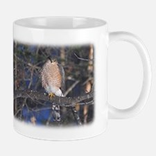 Sharp-Shinned Hawk Mug