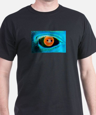 Catch the RED-Eye on Black T-Shirt