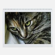 Zen Kitty Wall Calendar