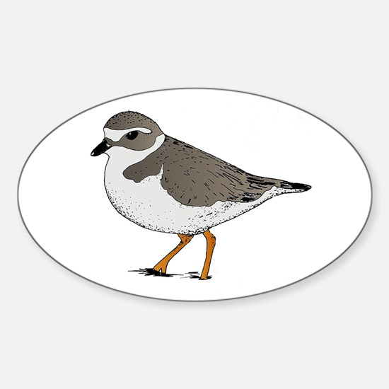 Piping Plover Oval Decal