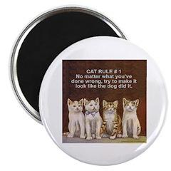 CUTE KITTEN/CAT Magnet
