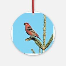 Pine Grosbeaks Ornament (Round)