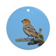 Pine Grosbeaks Ornament (Round)