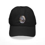 California Quail Black Cap
