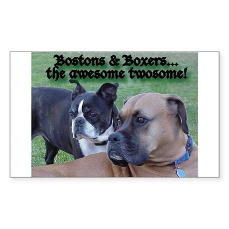 Awesome Twosome Rectangle Sticker