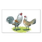 Ameraucana Chicken Pair Rectangle Sticker 50 pk)