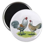 """Ameraucana Chicken Pair 2.25"""" Magnet (100 pac"""