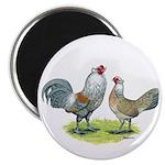 """Ameraucana Chicken Pair 2.25"""" Magnet (10 pack"""