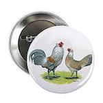 "Ameraucana Chicken Pair 2.25"" Button"