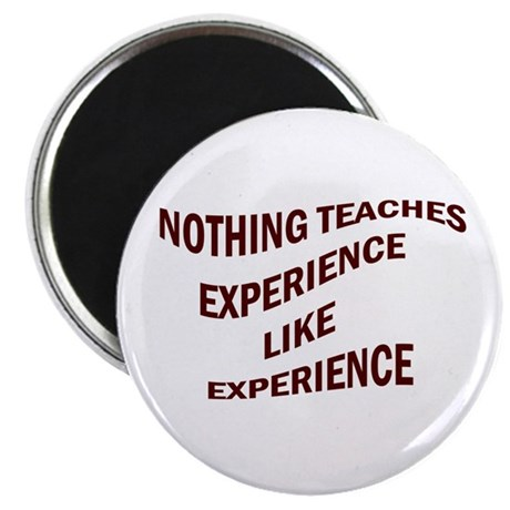 EXPERIENCE IS KNOWLEDGE Magnet