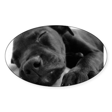 Sleeping Puppy Oval Sticker (50 pk)
