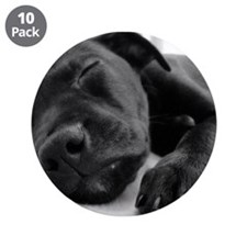 "Sleeping Puppy 3.5"" Button (10 pack)"
