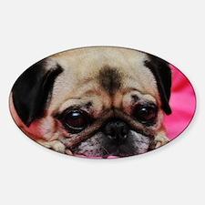 Pug Oval Sticker (50 pk)