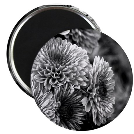 Grayscale Mums Magnet