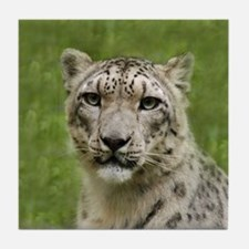 Snow Leopards Tile Coaster