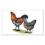 Ameraucana Poultry Rectangle Sticker 50 pk)