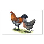 Ameraucana Poultry Rectangle Sticker 10 pk)