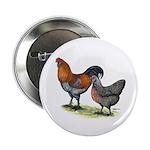 "Ameraucana Poultry 2.25"" Button"