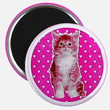 Pink Kitten Magnet