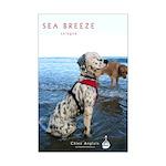 Sea Breeze Cologne Poster Print