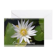 White Lotusflower Congratulations Cards 5x7 (20Pk)