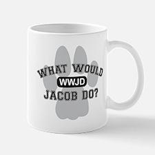 """WWJD"" Mug"