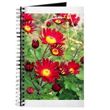 Red Daisy Mums Journal