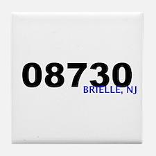 08730 Tile Coaster