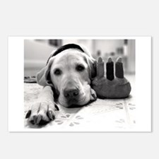 Birthday Pup Postcards (Package of 8)
