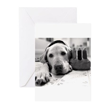 Birthday Pup Greeting Cards (Pk of 10)