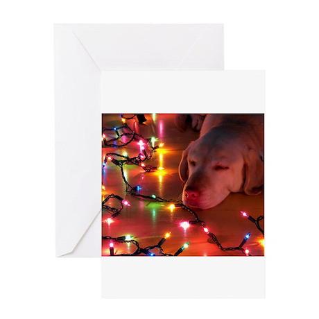 A Light Nap Greeting Card