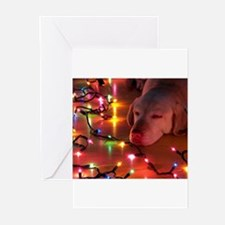 A Light Nap Greeting Cards (Pk of 10)