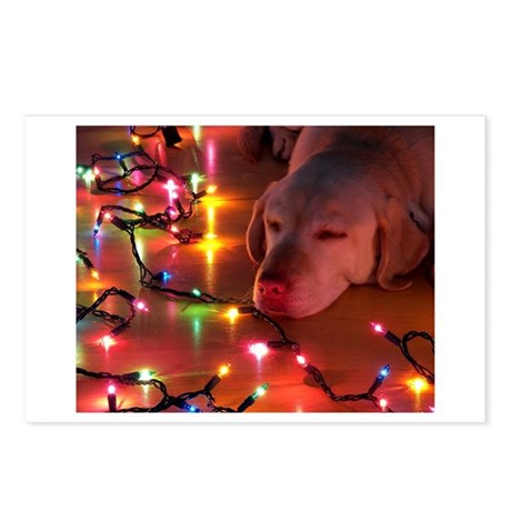 A Light Nap Postcards (Package of 8)