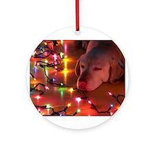 A Light Nap Ornament (Round)