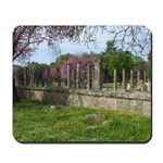 Ancient Olympia Mousepad