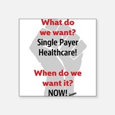 Single Payer Health Care NOW! Sticker